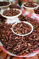 Grasshopers (chapulines) at the 20 de Noviembre food market in Oaxaca City, Oaxaca, Mexico