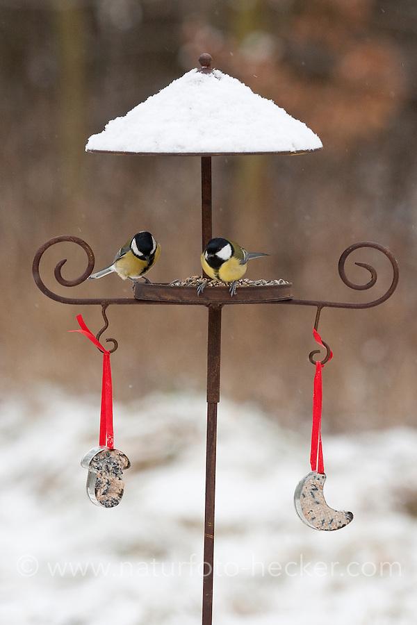 Kohlmeise, Kohl-Meise, Meise, an der Vogelfütterung, Fütterung im Winter bei Schnee, im mit Körnern gefüllten Futterhäuschen, Vogelhäuschen, Futterhaus, Vogelfutterhäuschen, Vogelfutterhaus, Vogelhaus, Winterfütterung, Parus major, great tit