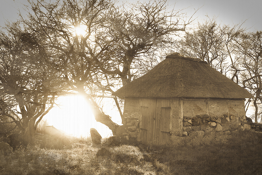 The old boathouse with thatch roof bears signs of repeadetly repairs through times. The sun is shining through the naked tree brancheds, reflecting in the sea.