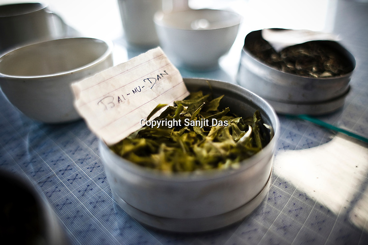 Bai-mu-Dan with other  tea leaves are laid out for tasting at the Makaibari Tea estate, in Darjeeling, India.