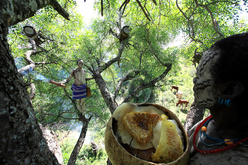 The Banas are shepherds. They are part of an ethnic group related to the Hamers and Karaq. They have the practice of placing their hives, made of hollowed out trunks, on the branches of the big acacia trees.///Les Banas sont des pasteurs. Il s'agit d'une ethnie apparentée aux Hamers et aux Karas. Ils ont l'habitude d'installer leurs ruches, faites dans des troncs évidés, sur les branches de grands acacias.