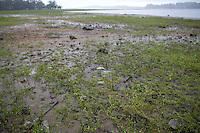 SAO PAULO, SP - 23.12.2014 - SOBE NÍVEL DA GUARAPIRANGA - Vista da represa nesta manhã desta terça-feira(12) no Pq. Barragem do Guarapiranga na zona sul de São Paulo. Com as chuvas na região a represa volta a apresentar alta e nível sobe para 36,6% de sua capacidade.<br /> <br /> (Foto: Fabricio Bomjardim / Brazil Photo Press)