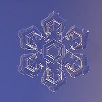Snowflake Alpha Hydri - Stellar Plate