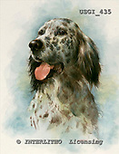 GIORDANO, REALISTIC ANIMALS, REALISTISCHE TIERE, ANIMALES REALISTICOS, paintings+++++,USGI435,#A# dogs
