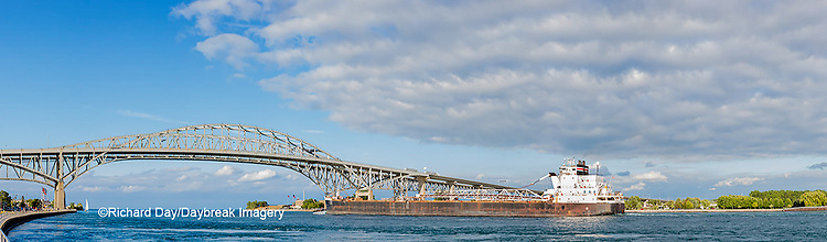 64795-01607 Ship and Blue Water Bridge Port Huron, MI