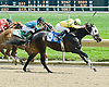 Black Coco winning at Delaware Park on 4/30/11