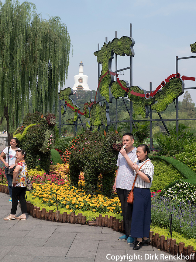 Blumenausstellung im BeiHai Park, Peking, China, Asien<br /> Flower exhibition  in Beihai Park, Beijing, China, Asia