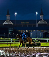 LOUISVILLE, KENTUCKY - MAY 01: Horses walk on the track before sunrise during Kentucky Derby and Oaks preparations at Churchill Downs on May 1, 2017 in Louisville, Kentucky. (Photo by Scott Serio/Eclipse Sportswire/Getty Images)