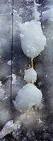 Amérique/Amérique du Nord/Canada/Québec/ Québec: Cordage d'un navire pris dans les glaces  au port de Québec