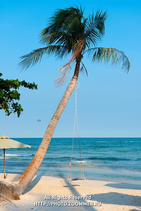 Swing On Lonely Palm Tree, Bai Sao Beach, Phu Quoc, Vietnam