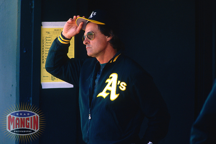 OAKLAND, CA - Manager Tony La Russa of the Oakland Athletics watches from the dugout during a game at the Oakland Coliseum in Oakland, California in 1994. (Photo by Brad Mangin)