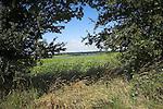Suffolk farming landscape scenery, East Anglia, England. Glimpse of River Deben, near Methersgate,