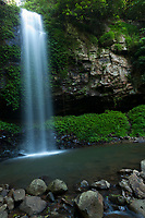 Crystal Shower Falls, Dorrigo National Park, NSW, Australia