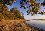 View of Sears Island, Searsport, Maine, USA