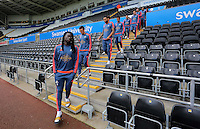 Bafetimbi Gomis of Swansea leads team mates down the stand prior to the Barclays Premier League match between Swansea City and Arsenal at the Liberty Stadium, Swansea on October 31st 2015