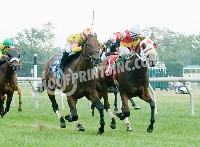 Hold True winning at Delaware Park on 7/28/12