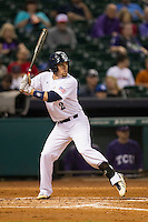 Rice Owls third baseman Shane Hoelscher #2 at bat during the NCAA baseball game against the TCU Horned Frogs on March 1, 2014 during the Houston College Classic at Minute Maid Park in Houston, Texas. Rice defeated TCU 1-0. (Andrew Woolley/Four Seam Images)