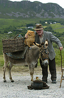 Waiting for he yanks to come is Jack Lynch from Ballycleeve as he poses with his donkey and dog on the Ring of Kerry on Tuesday.<br />