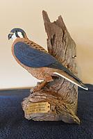 NWA Democrat-Gazette/FLIP PUTTHOFF<br />An American Kestrel roosts in this Charles Wolfe carving.
