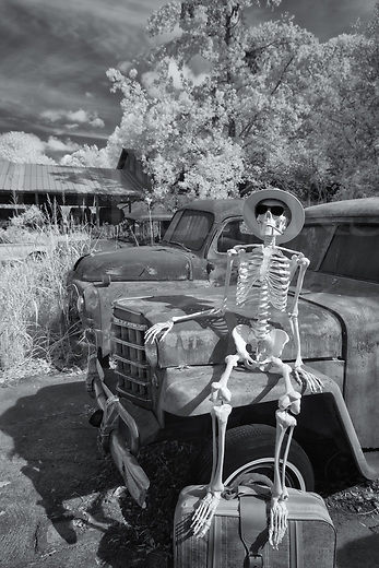 Traveling skeleton sitting on a junkyard car fender waiting to leave on a trip with his suitcase, black and white infrared photograph.