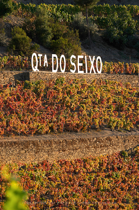autumn colours vineyards quinta do seixo sandeman douro portugal