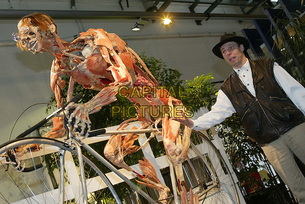 BODY WORLDS  .Gunther von Hagens updates exhibition with 9 new plastinates at the Atlantis Gallery, Brick Lane.Ref:20020712.www.capitalpictures.com.sales@capitalpictures.com.© Capital Pictures