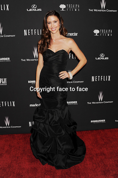 BEVERLY HILLS, CA- JANUARY 12: Actress/model Shannon Elizabeth attends The Weinstein Company &amp; Netflix 2014 Golden Globes After Party held at The Beverly Hilton Hotel on January 12, 2014 in Beverly Hills, California.<br />