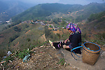 Black Hmông Zao minority woman near Sapa, Vietnam