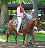 Lance and Sma Hopkins before The Strike Your Colors Stakes at Delaware Park on 8/5/15