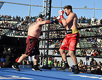 "CARSON, CA- APRIL 20:  ANDY RUIZ JR. vs ALEXANDER DIMITRENKO during the Fox Sports ""PBC on Fox"" Fight Night at Dignity Health Sports Park on April 20, 2019 in Carson, California. (Photo by Frank Micelotta/Fox Sports/PictureGroup)"