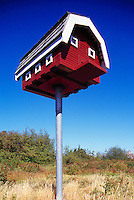 Terra Nova Rural Park, Richmond, BC, British Columbia, Canada - Large Birdhouse for Barn Owls