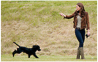 Catherine Duchess Of Cambridge and Lupo her Cocker Spaniel at The Beaufort Polo Club...Tel: 07515 876520.e mail: kelvin@kisforkate.com