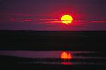 Tundra sunset, Alaska