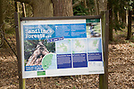 Forestry Commission public information board about their future plans for the Suffolk Sandlings, Rendlesham Forest, Suffolk, England