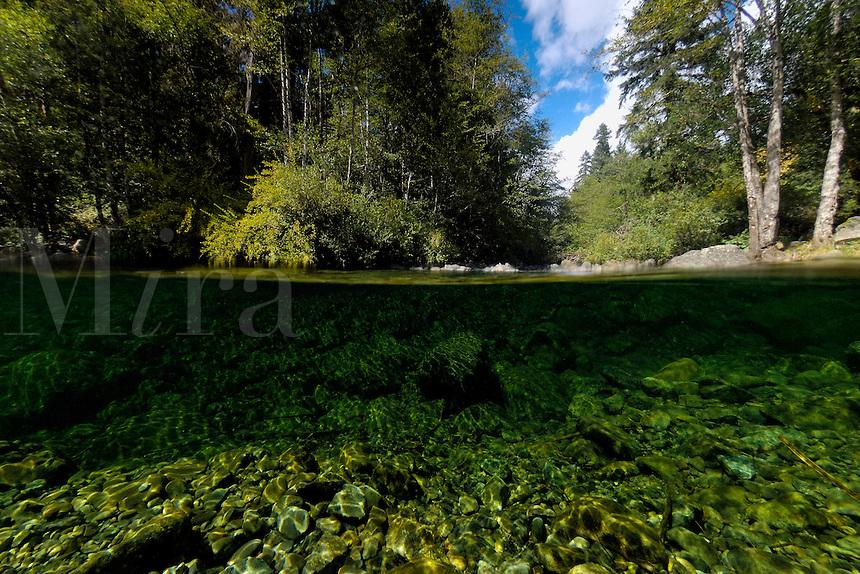 Patrick Creek, California