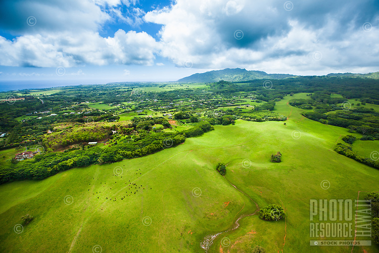 An aerial perspective of a large ranch property on Kaua'i.