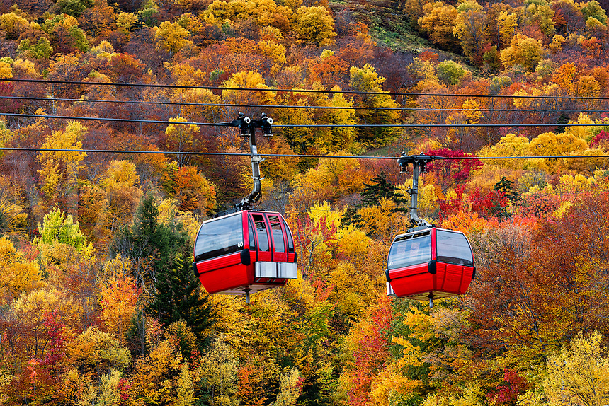 Autumn gondola sightseeing excursion at Stowe Mountain, Vermont, USA.