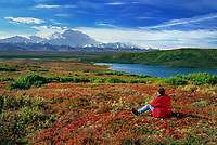 Mt. Denali, Hiker, Denali National Park, Alaska.