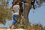 A Palestinian child takes shelter behind an olive tree after Israeli soldiers retaliate against Palestinian stone throwers with CS gas in the West Bank village of Ni'lin near Ramallah on 16/07/2010.