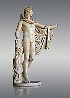 2nd century AD Roman statue of Apollo known as the Belvederre Apollo. The Apollo statue originally had a bow in its left hand and Apollo is depiceted having just fired an arrow.  Probably a Roman copy of a Hellenistic statue from around 330-320 BC by Leochares. Inv 1015, Vatican Museum Rome, Italy,  grey  background