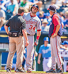 25 August 2013: Washington Nationals outfielder Bryce Harper is visited by Athletic Trainer Lee Kuntz and Manager Davey Johnson after fouling a ball onto his left foot during a game against the Kansas City Royals at Kauffman Stadium in Kansas City, MO. The Royals defeated the Nationals 6-4, to take the final game of their 3-game inter-league series. Mandatory Credit: Ed Wolfstein Photo *** RAW (NEF) Image File Available ***