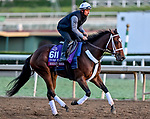 October 29, 2019 : Breeders' Cup Turf Sprint entrant Shekky Shebaz, trained by Jason Servis, exercises in preparation for the Breeders' Cup World Championships at Santa Anita Park in Arcadia, California on October 29, 2019. Scott Serio/Eclipse Sportswire/Breeders' Cup/CSM