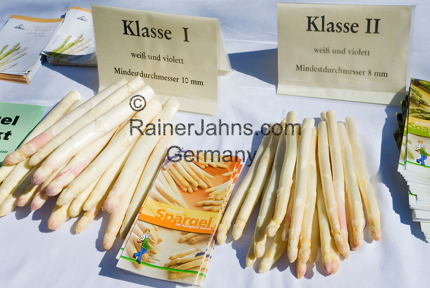 Deutschland, Bayern, Oberbayern, Muenchen: Informationsstand, weisser, Deutscher Spargel  | Germany, Bavaria, Upper Bavaria, Munich: white asparagus, quality class