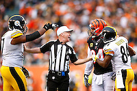 A referee gets in-between Domata Peko #94 of the Cincinnati Bengals and Marcus Gilbert #77 of the Pittsburgh Steelers in front of Antonio Brown #84 of the Pittsburgh Steelers during the game at Paul Brown Stadium on December 12, 2015 in Cincinnati, Ohio. (Photo by Jared Wickerham/DKPittsburghSports)