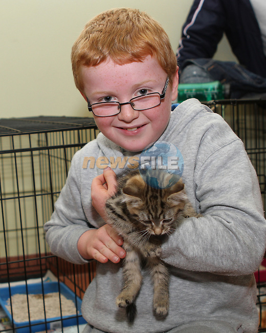 Ross Curley at the Cat Rehoming Day at Duleek Veterinary Clinic...(Photo credit should read Jenny Matthews/NEWSFILE)...