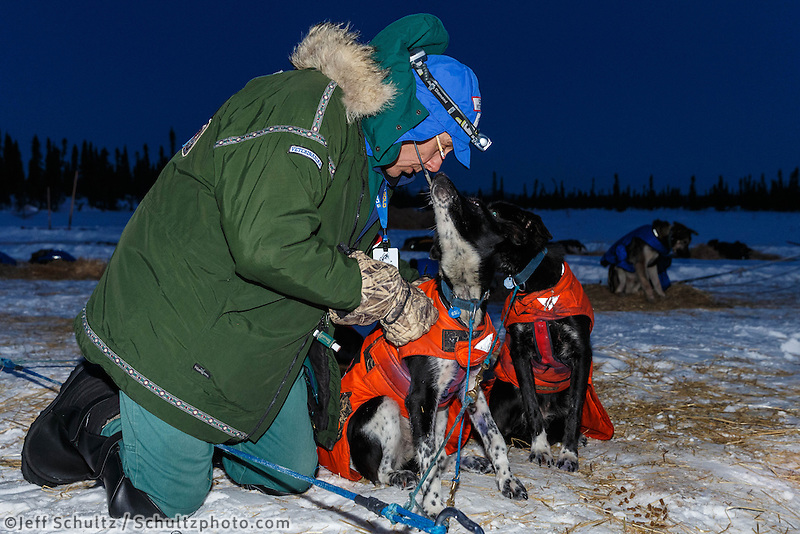 Volunteer veterinarian Jim Reichert examines a Ken Anderson dog at the Cripple checkpoint, Thursday, March 6, during the Iditarod Sled Dog Race 2014.<br /> <br /> PHOTO (c) BY JEFF SCHULTZ/IditarodPhotos.com -- REPRODUCTION PROHIBITED WITHOUT PERMISSION