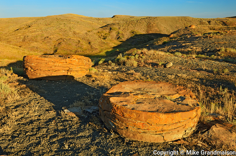 Sandstone concretions st sunrise, Red Rock Coulee Ntaural Preserve, Alberta, Canada