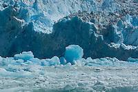 Iceberg and South Sawyer Glacier-Tracy Arm Fjord, Alaska, USA