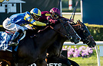 ELMONT, NY - JULY 09: Catholic Boy, inside, re-rallies to defeat Analyze It in the Belmont Derby during Stars and Stripes Racing Festival  at Belmont Park on July 7, 2018 in Elmont, New York. (Photo by Diana Cohen/Eclipse Sportswire/Getty Images)