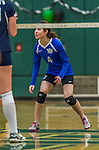 1 November 2015: Yeshiva University Maccabee Outside Hitter, Setter, and team co-Captain Shana Wolfstein, a Senior from Burlington, VT, in action against the Saint Joseph College Bears at SUNY Old Westbury in Old Westbury, NY. The Bears shut out the Maccabees 3-0 in NCAA women's volleyball, Skyline Conference play. Mandatory Credit: Ed Wolfstein Photo *** RAW (NEF) Image File Available ***